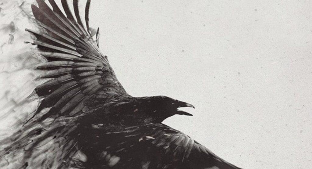 La Secta de Los Tordos: crimen, hostilidad y misterio
