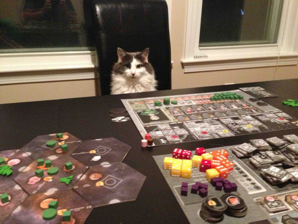 Cómo organizar una reunión de juego
