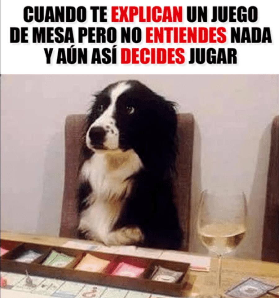 Meme juegos de mesa perro